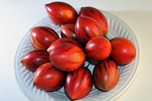 Tree Tomato Fruit, Fruit, Red, Ripe, Oval, Pointy