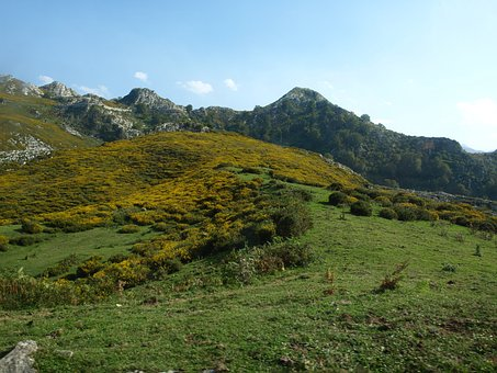 Lakes, Covadonga, Asturias, Nature