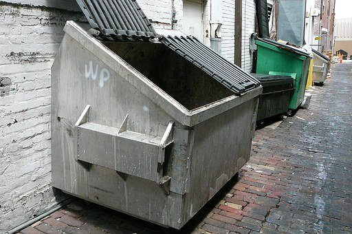 Dumpster, Trash, Downtown, Outside, Open Lid, Garbage