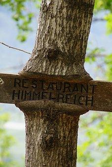 Wood, Teaches, Tree, Table, Walk, Mountains, Ate, Trees