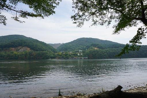 Chuncheon, Gangwon, River, Lake, Nature, Forest