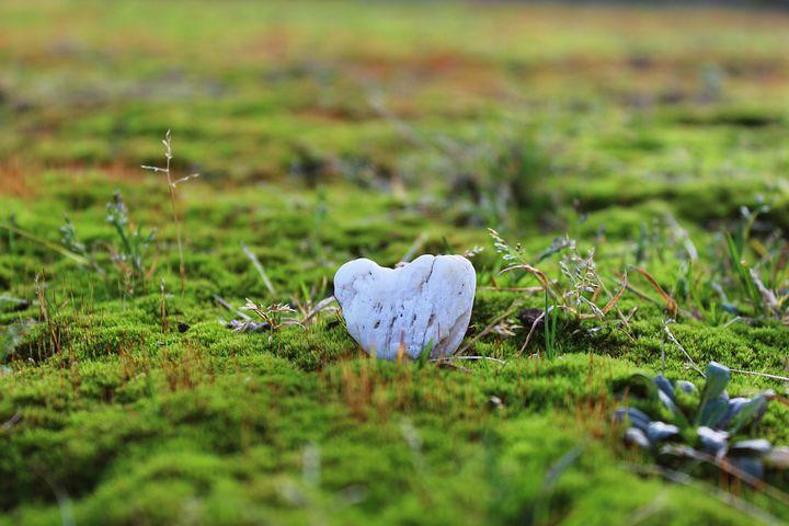 Stone, Stone Heart, Heart, Moss, Mossy, Ground, Green