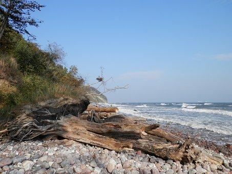 Baltic Sea, Cliff, View, Bluff, Coast, Steilkueste