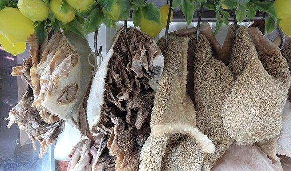 Italy, Naples, Food, Vendor, Intestines