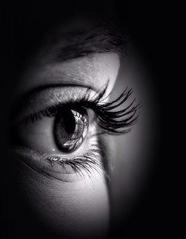 Eye, Pupil, Iris, View, Eyelash, See, Look, Behold