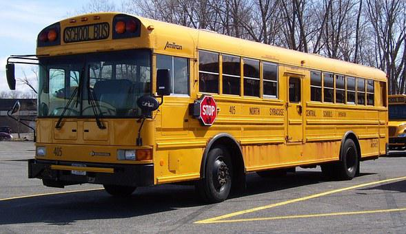 School Bus, America, Transportation, Vehicle