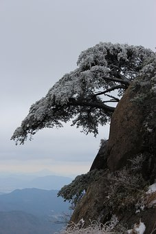 Mount Sanqing, The Sentence For, Narrative