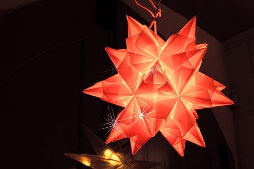 Poinsettia, Shimmer, Christmas, Advent, Decoration