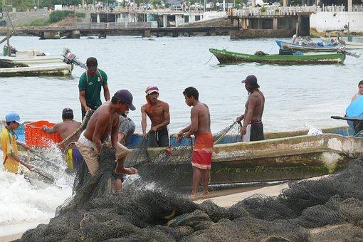 Acapulco, Ocean, Mexico, Pelikan, The Fisherman
