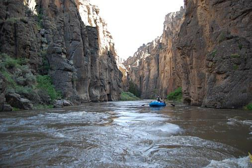 Rafting, River Rafting, Adventure, Sport, White Water