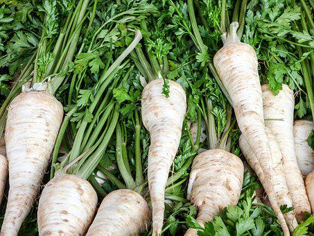 Vegetables, Turnip, Market, Food, Plant, November