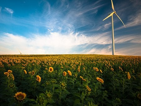 Agriculture, Beautiful, Clouds, Crop, Cropland, Farm