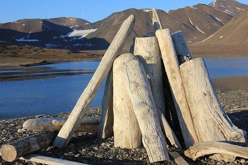 Svalbard, Driftwood, Wood