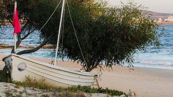 Boat, Beach, Empty, Autumn, End Of Season, Sand, Tree