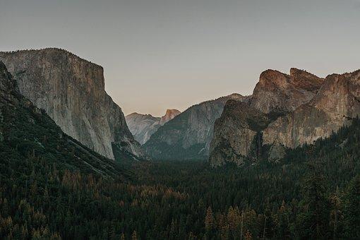 Cliff, Conifers, Dawn, Dusk, Fir Trees, Forest, Idyllic