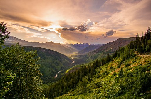 Clouds, Cloudy, Conifers, Dawn, Daylight, Environment