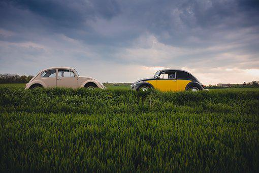 Automobile, Automotive, Beetles, Cars, Countryside