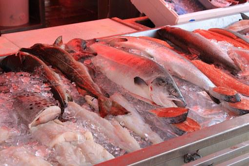 Fish, Display, Market, Ice, Sea, Food, Fish Stand