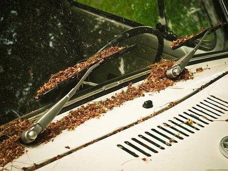 Auto, Windshield, Automotive, Auto Detail, Classic, Old