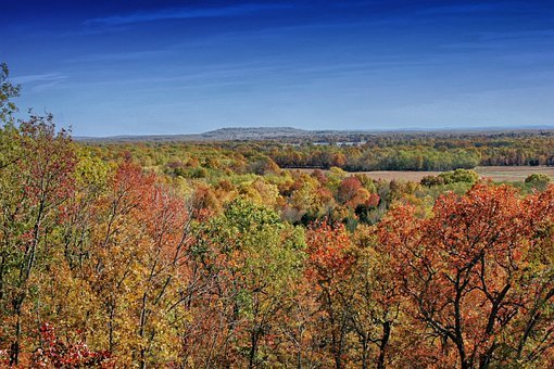 Arkansas, Landscape, Scenic, Forest, Trees, Woods, Fall