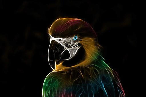 Parrot, Ara, Bird, Colorful, Fractalius