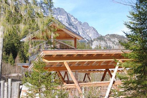 Ramsau, Berchtesgaden, Deer Feeding, National Park