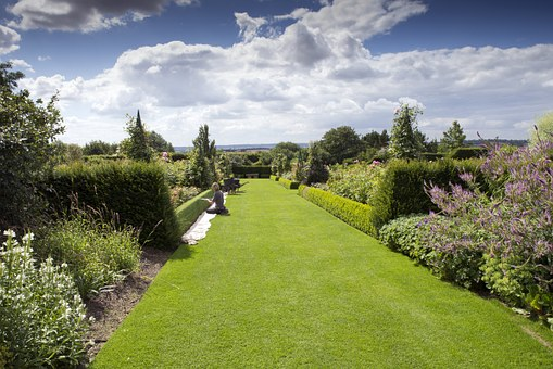 Rhs Hyde Hall, Garden, Box Topiary, Gardener, Lawn
