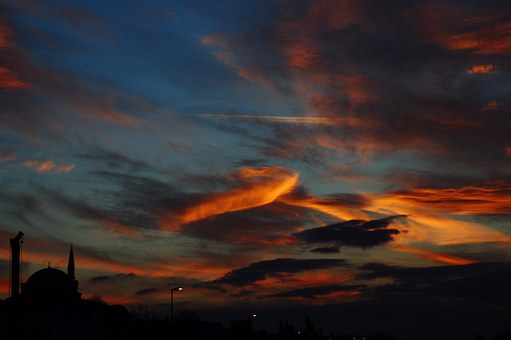 Turkey, Istanbul, Sky, Animal, Sunset, Clouds