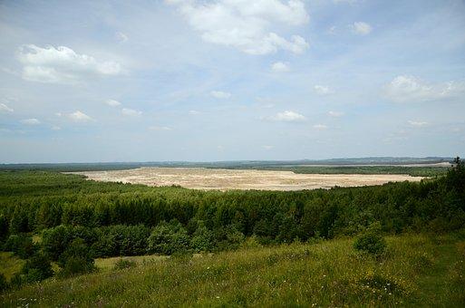 Desert, Desert Błędowska, Forest, View, Summer