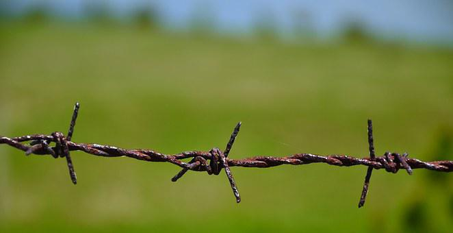 Wire, Knitting, Landscape, Rust, Wireview