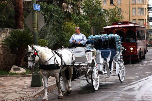 Carriage, Horse-drawn, Trolley, Transportation, Horse
