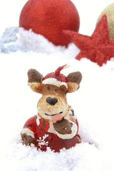 Christmas, Decoration, Reindeer, Snow, Winter, Day