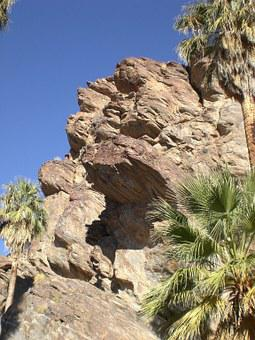 Palm Cayon, California, Nature, Palm Trees, Desert