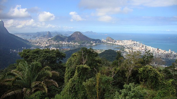 Rio De Janero, Brazil, City, South America, Jungle, Sea