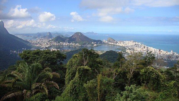 Rio De Janero, Brazil, City, South America, Jungle, Sea
