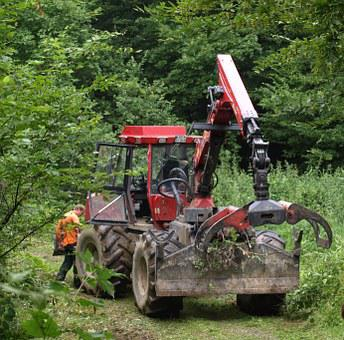 Fort Bend Tug, Forestry Work, Machine, Forest