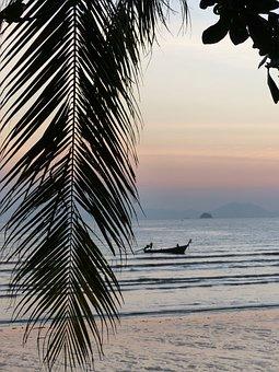 Palm Leaf, Sunset, Ao Nang Beach, Krabi, Thailand