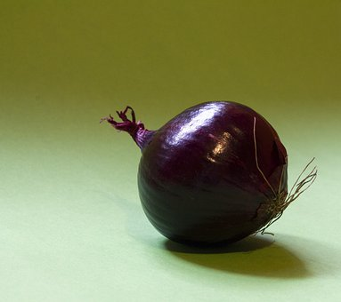 Onion, Zwiebelig, Onions, Zwiebelpflanze, Cook