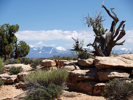 Arches National Park, Utah, Usa, Tourist Attraction
