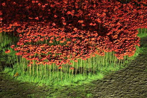 Poppies, Rivers Of Blood, Ceramic, Ornaments, Britain