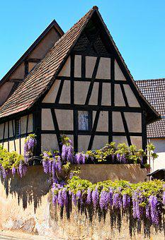 Fachwerkhaus, Wisteria, Truss, Old House, Building, Old
