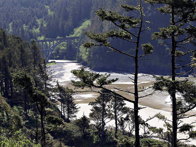 Bay, Shoreline, Forest, Bridge, Near Heceta, Lighthouse