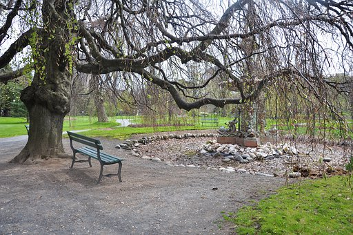 Bench, Park, Outdoor, Seat, Relax, Wood, Sit, Empty