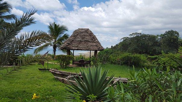 Africa, Zanzibar, Hakuna Matata, Beach, Tropics
