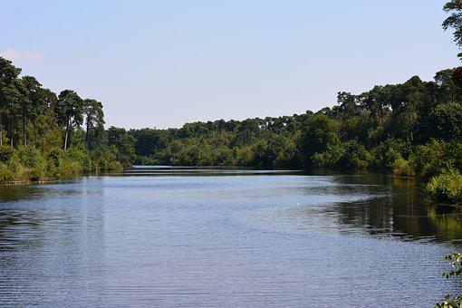 Ven, Oisterwijk, 14 Lakes Tour, Water, Trees, Nature