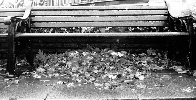 Fall, Bench, Leaves, Park, Seat, Under, Autumn, Pile