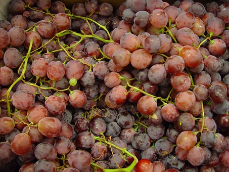 Globe, Red, Fruit, Grapes, Fruits, Plants, Flora