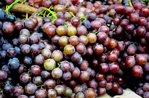 Food, Fruit, Grape, Grapes, Globe Grapes, Summer