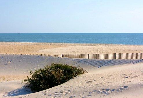 Beach, Windswept, Sand Erosion Control, Sand Fence