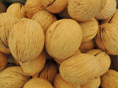 Wool Nut, Pong, Seeds, Pattern, Decoration